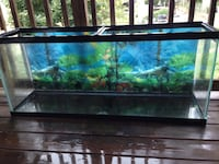 55 gallon fish tank with accessories PITTSBURGH