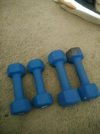 Two blue fixed weight dumbbells 21207, 21207