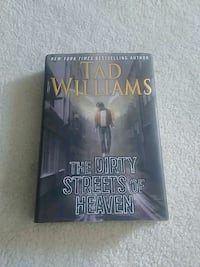 The Dirty Streets of Heaven book Surrey, V3W