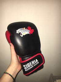 black and red boxing gloves Toronto, M3H 4X5