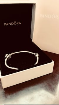 Pandora bracelet & Dragonfly charm Anchorage, 99503