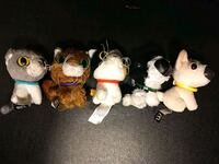 Cats vs Dogs stuffed animals  Bernalillo, 87004