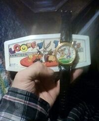 Looney toons watch and case Akron, 44312