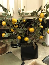 Beautiful Artificial Lemon Tree Piedmont, 29673