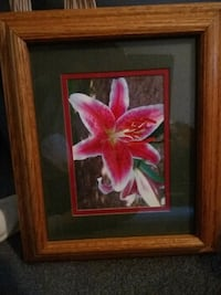 Framed picture of lily Knoxville, 37914