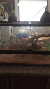 rectangular black framed clear glass pet tank Edmonton, T5Y