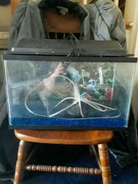 Small fish tank with some accessories