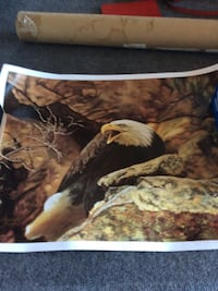 unframed eagle painting