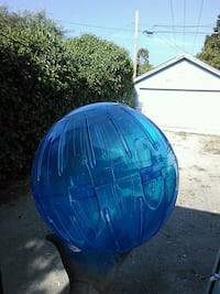 Extra large hamster ball Soquel, 95073