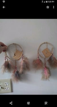 Dream Catchers Gary