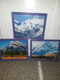 set of 3 picture