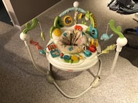 baby's white and green Fisher-Price jumperoo Canton, 44718