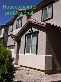 Houses painting professional