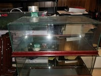 (4) Glass Display Cases w/ Wood Tirm