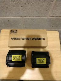 Ankle/wrist weights Bear, 19701