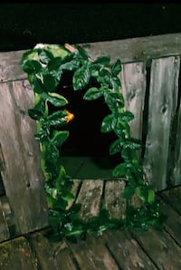 Hand-made leaf boarder mirror decor