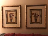 Pair beautiful pictures - gorgeous quality custom framed  Owings Mills, 21117