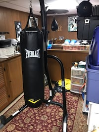 Everlast Heavy Bag/ Speed combo With Gloves  Sea Cliff, 11579