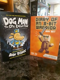 Dog Man and Diary of an 8Bit Warrior box sets