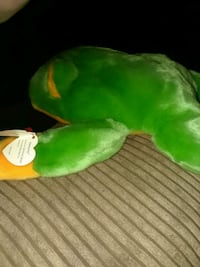 green and yellow frog plush toy Hyde Park, 12538