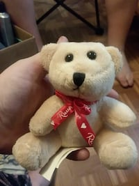 Little bear plush Binghamton, 13904