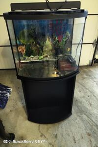 Fish Tank and Table  Vaughan