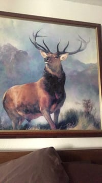 Deer painting from set of desperate housewife  Los Angeles, 90065