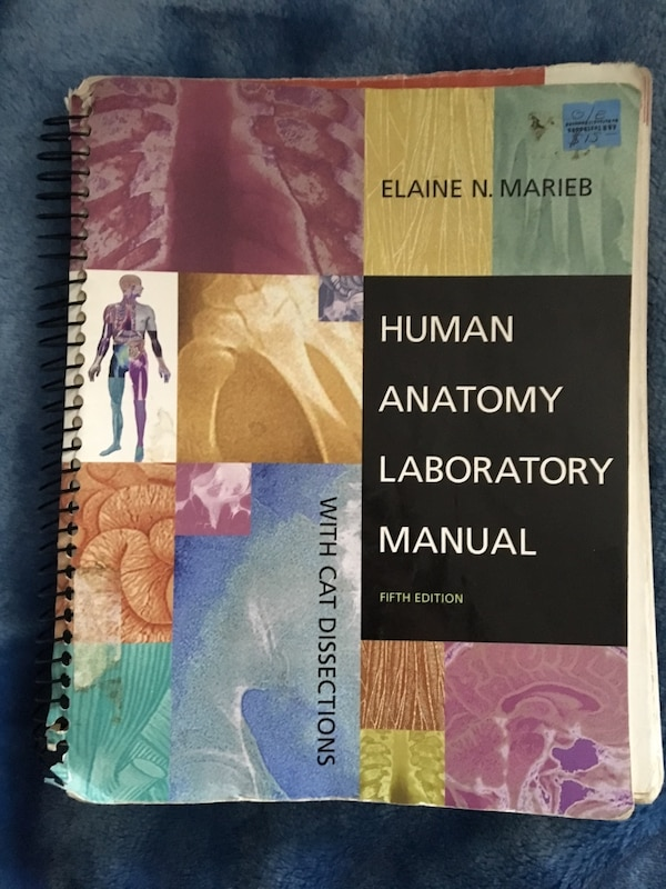 Used Human Anatomy Laboratory Manual By Elaine N Marieb For Sale In