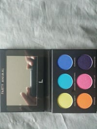 Party animal makeup palette New York, 10029