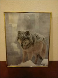 Wolf picture w/ frame Las Vegas, 89169
