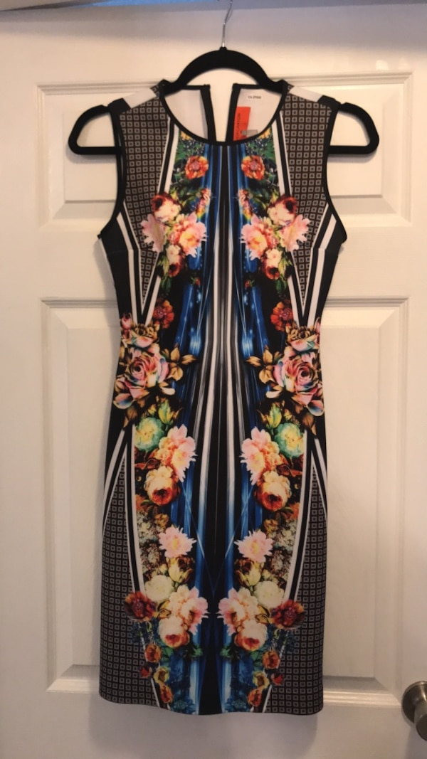 XS Clover Canyon Printed Stretch Dress
