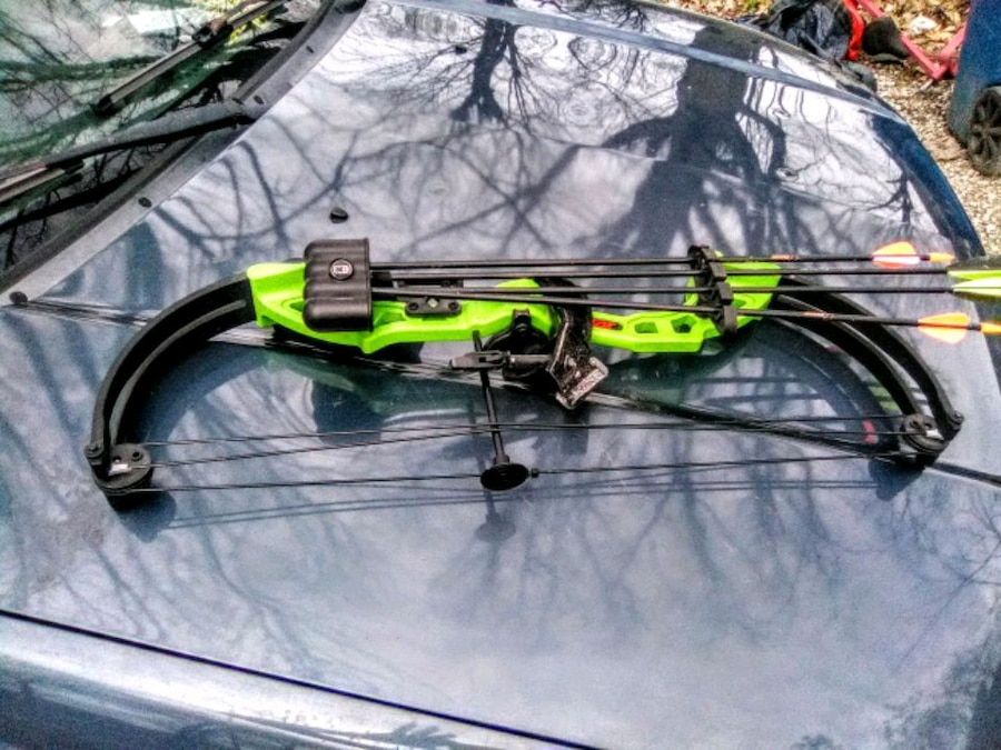 Photo Youth Bear brave compound bow and release, and a branet recurve