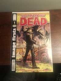 The walking dead image first 1