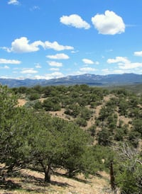 5+ Colorado Acres for sale