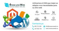 Web en Wordpress, Drupal o Joomla MADRID