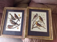 2 double matted, framed prints by w rutledge Johnson City, 37604