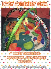 Price reduced to $10! Baby's zoo activity gym Windsor, 23487