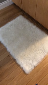 white and brown area rug Kitchener, N2E 3X2