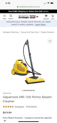 Steam cleaner protects from viruses and bacteria