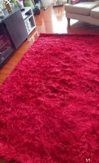 Brand new Shaggy Red Rug Mississauga, L5B 3Y1