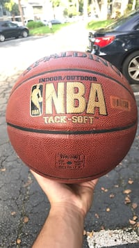 brown NBA basketball Naples, 34104