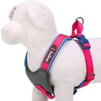 Pet Dog Harnesses Small Hollywood, 33020