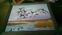 Gunner L. Hilliard Waterfowl Painting Centreville, 20120