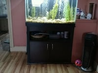 Fish tank 65 gal with Bass