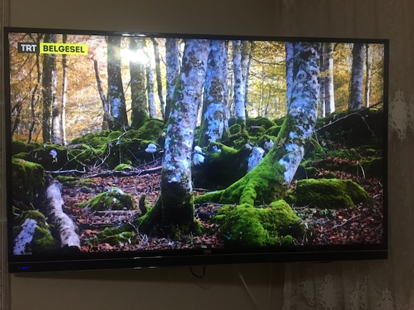 Beko 49inç 123 ekran 3D Smart tv led tv