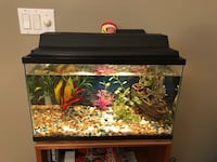 10 gal fish tank all set up with bubble blowing ship. One bottom feeder included Scarborough, 04074