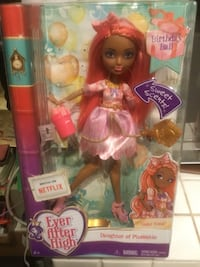 Used Ever After High Cedar Wood Birthday Bash Doll  San Francisco, 94118