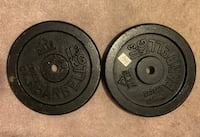 Two 25 lb disc weights