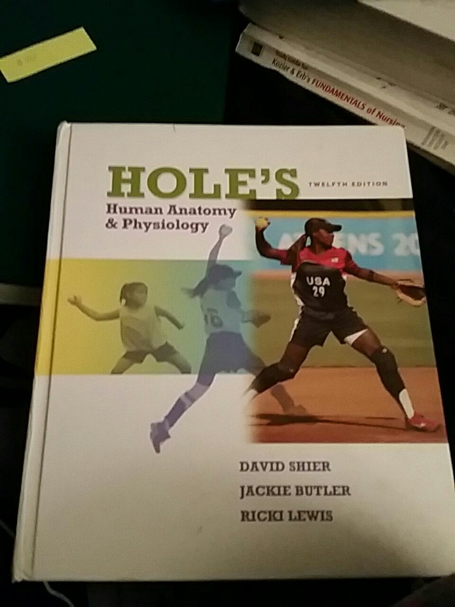 Beautiful Holes Anatomy And Physiology 12th Edition Lab Manual ...