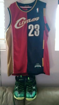 **special edition** lebron james jersey + shoes